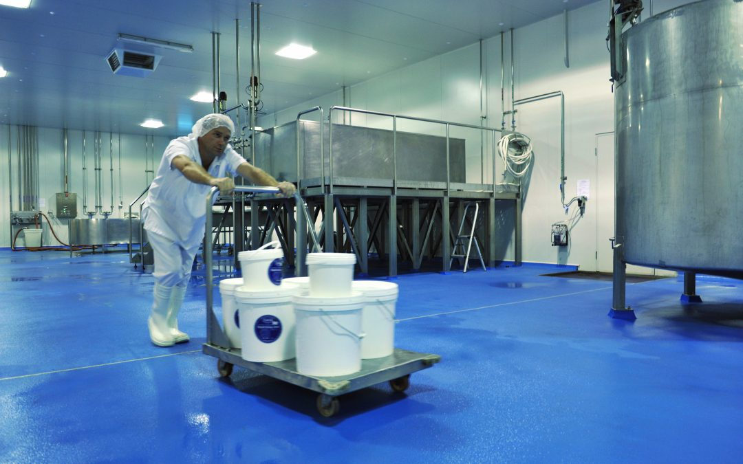 Maintaining Health Standards in Food Preparation
